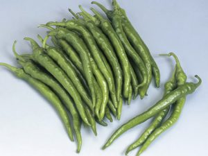 Fushimi Pepper Seeds.
