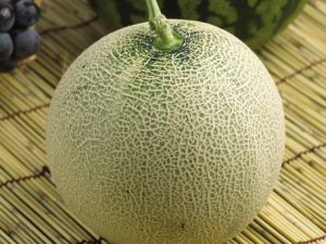 Bannana Melon Rare 20 Seeds Super Hot Chiles